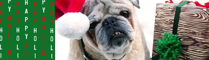 AuntBucky_Holiday_Pug
